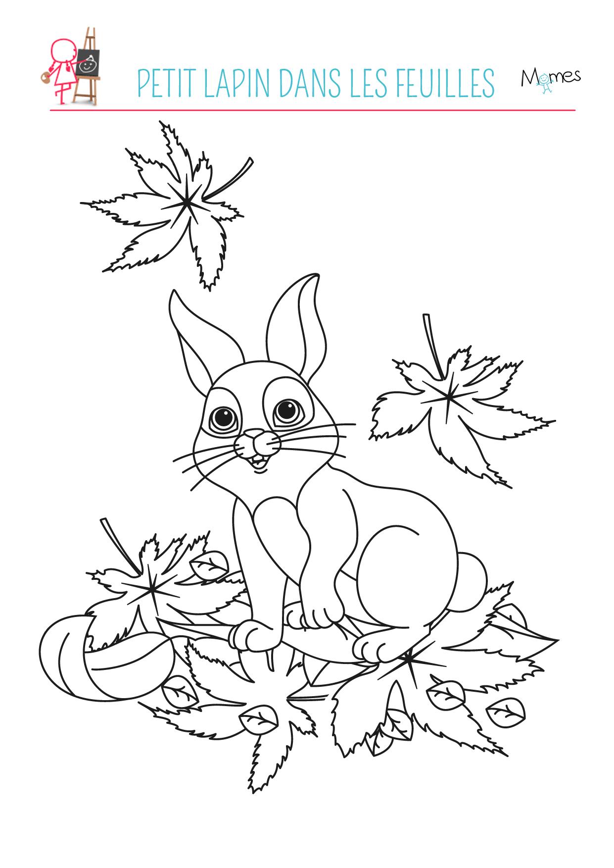 Coloriage automne le petit lapin - Coloriage feuilles d automne ...