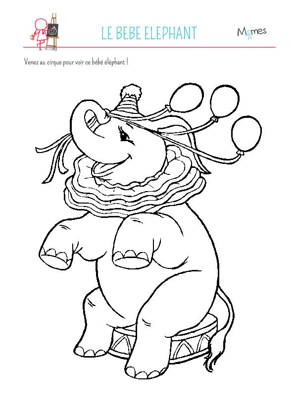 Coloriage du cirque: bébé éléphant