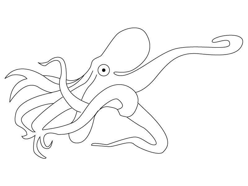 Coloriage la pieuvre