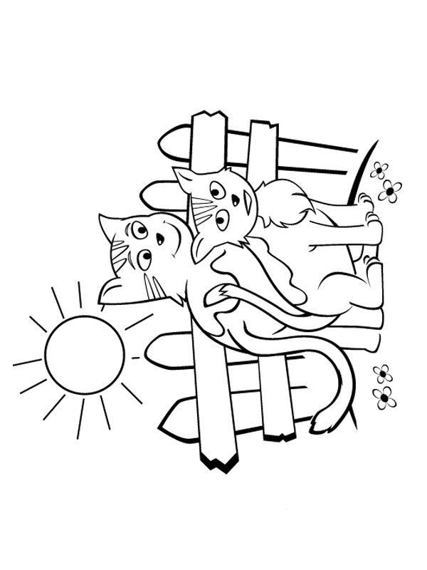 Coloriage les chats (5)