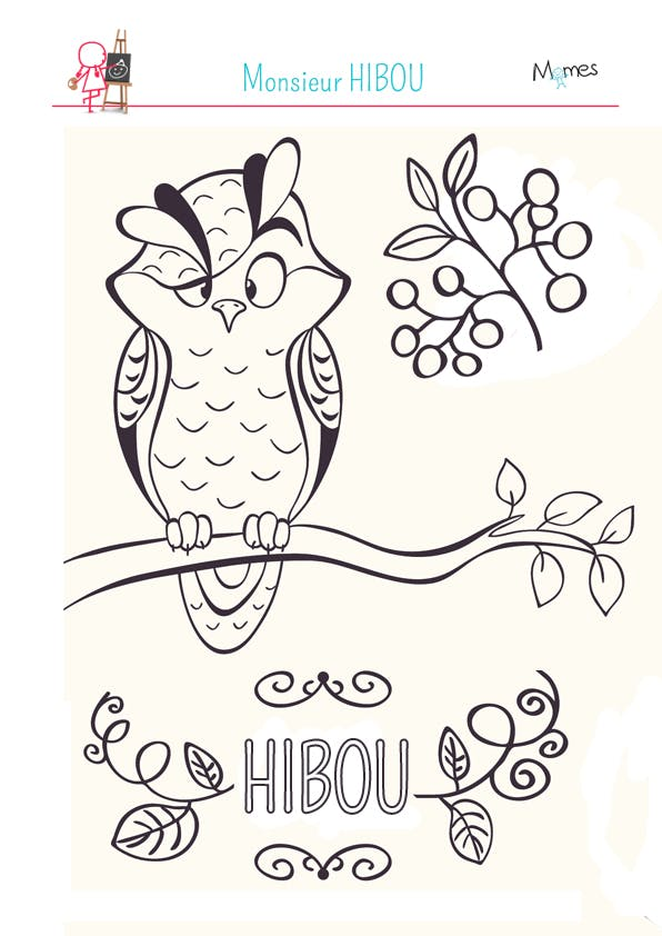 Coloriage monsieur hibou - Dessins hibou ...