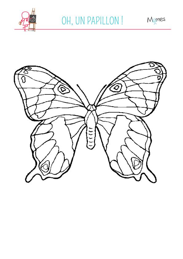 Coloriage grand papillon - Jeux de coloriage de papillon ...