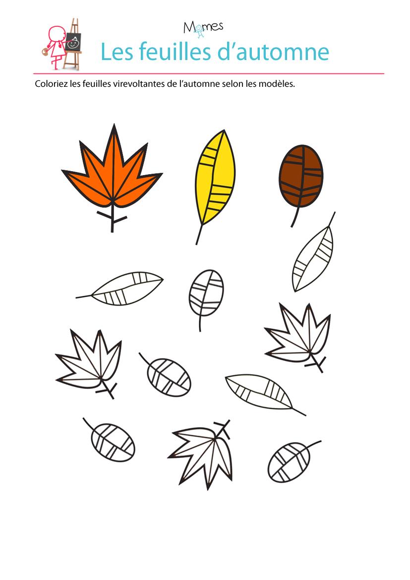 Colorier les feuilles selon le mod le - Coloriage feuilles d automne ...