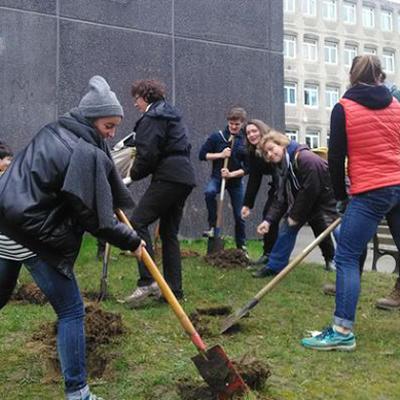 corvées jardinage collège paris