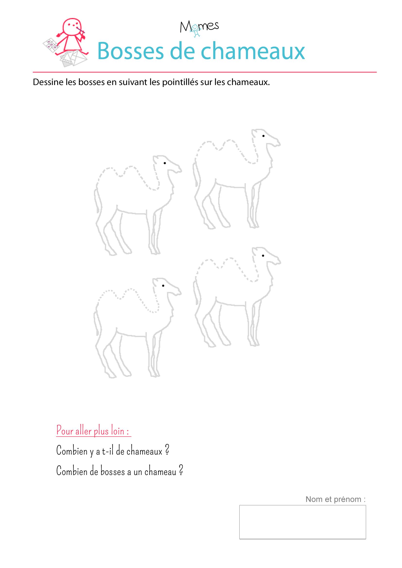 Des chameaux - exercice de tracé