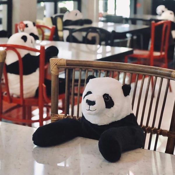 Des pandas en peluche dans un restaurant pour faire respecter la distanciation sociale
