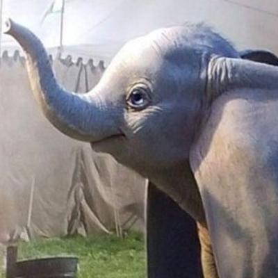 Disney dévoile les premières images de Dumbo de Tim Burton