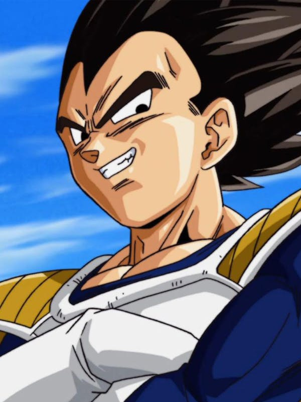 Dragon Ball : Vegeta