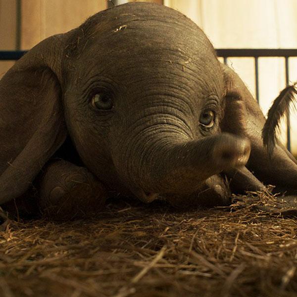 Dumbo le film Disney nouvelle bande annonce bouleversante émouvante