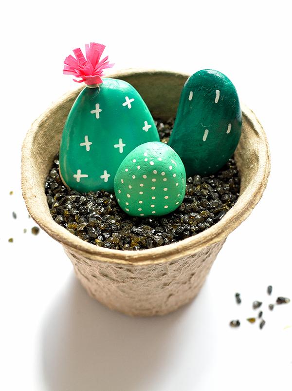 Des galets-cactus