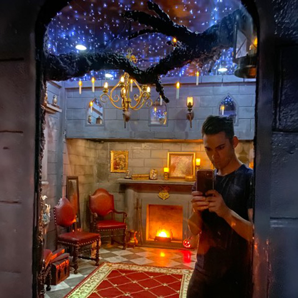 chambre harry potter brian thompson