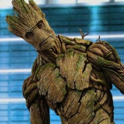 Je s'appelle Groot ou quand un prof demande à ses étudiants d'écrire un CV façon Avengers !