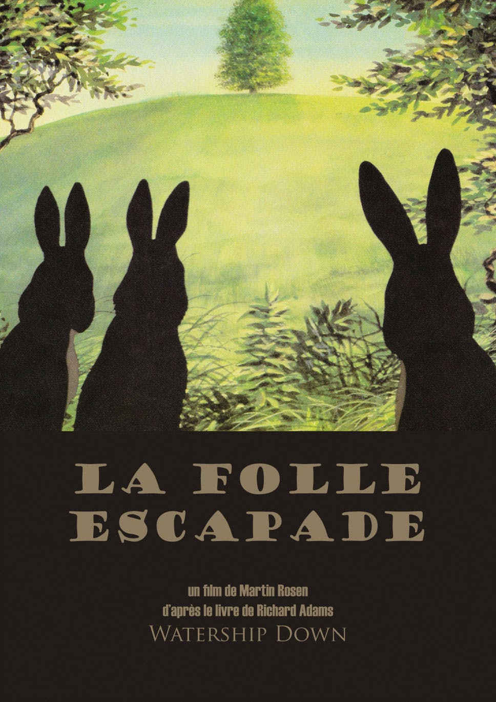 Affiche La folle escapade