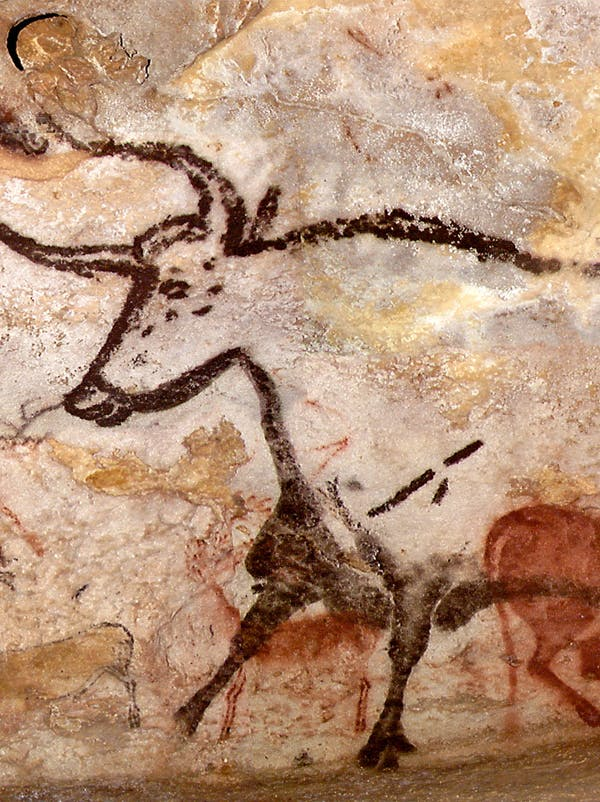 La grotte de lascaux et l homme de tautavel - Coloriage grotte ...