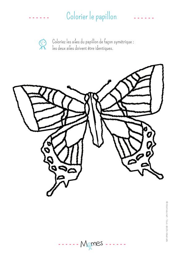 La sym trie du papillon exercice niveau 1 - Coloriage symetrie ...