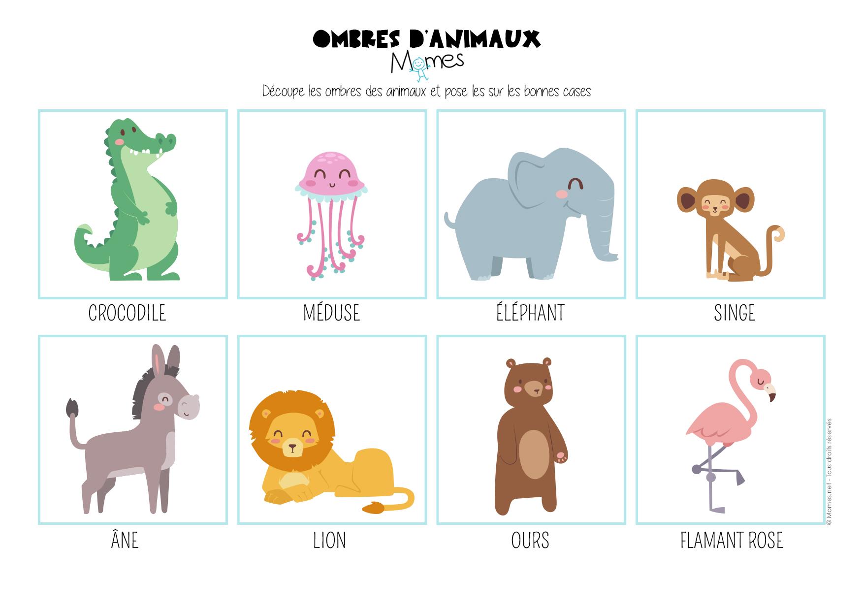 Le jeu des ombres d\'animaux - Momes.net
