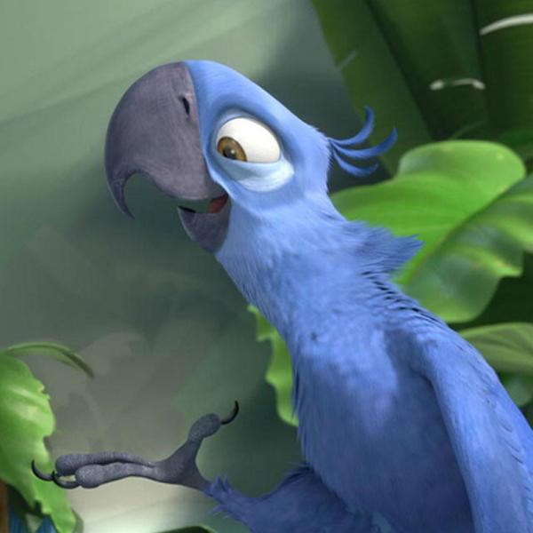 Le perroquet bleu du dessin animé Rio est officiellement une espèce éteinte