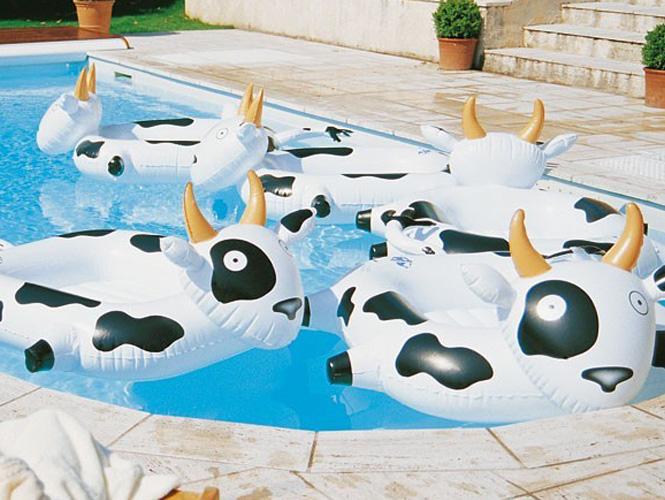 Les bouées vaches