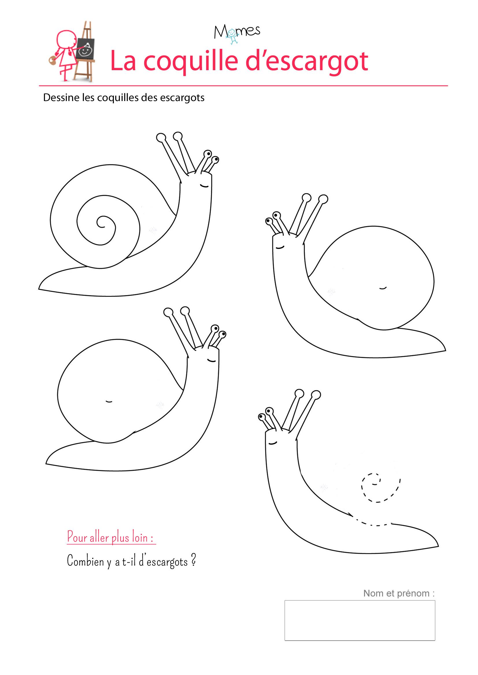 Extrêmement Les coquilles d'escargots - exercice sur les spirales - Momes.net FW69