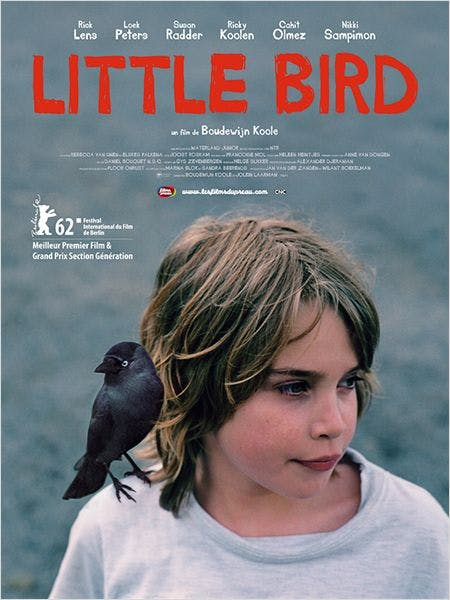 Affiche Little Bird