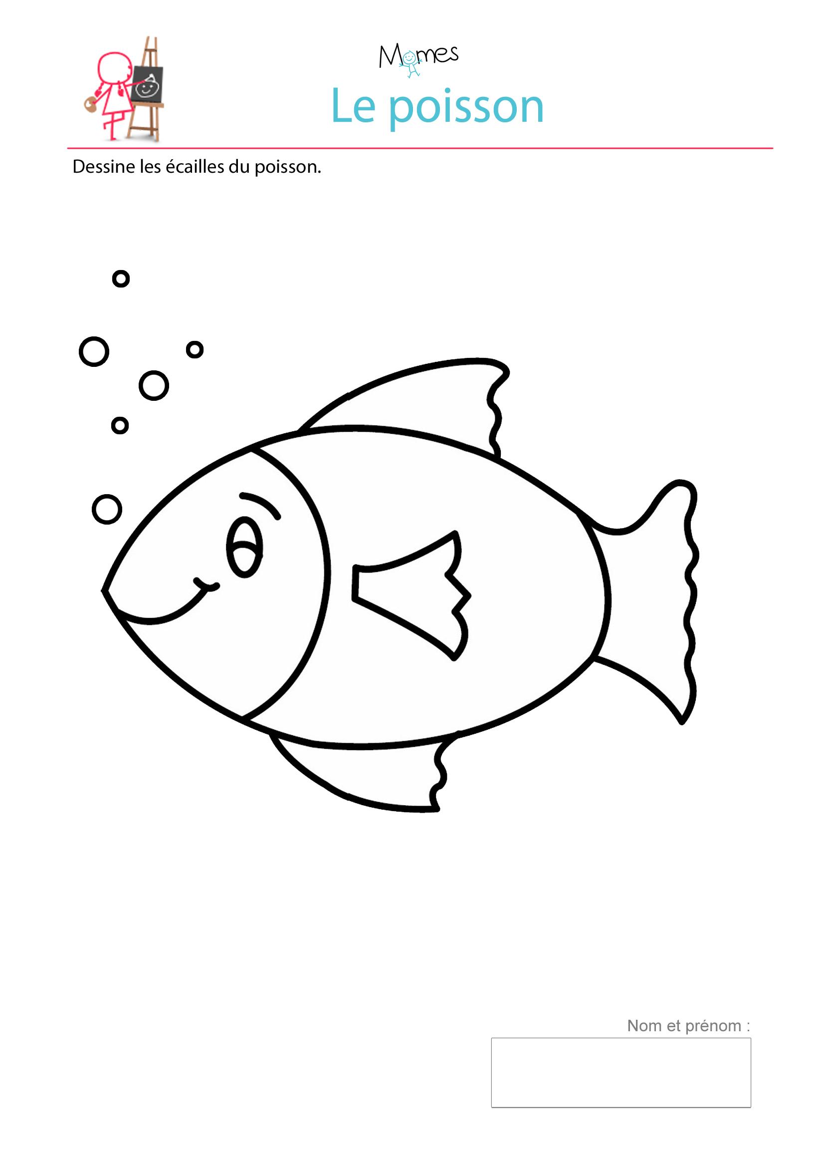 graphisme poisson