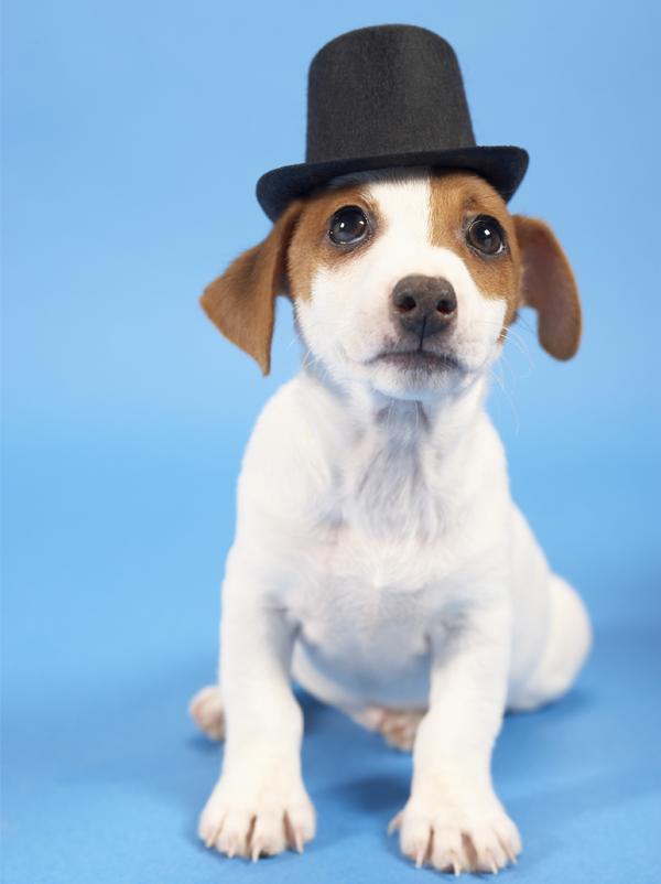 Comptine Mon chapeau