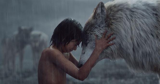 mowgli dit adieu aux loups