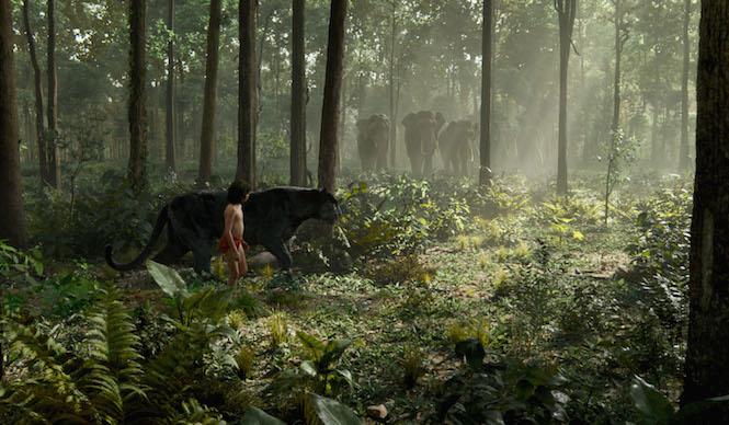Mowgli et Bagheera rencontrent les éléphants