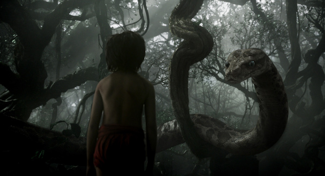 mowgli rencontre kaa