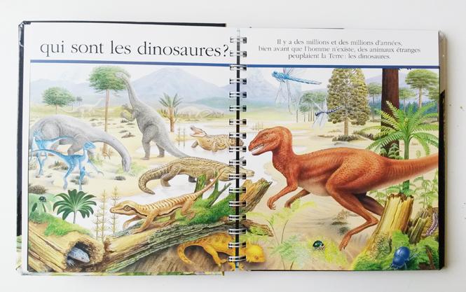 observer les dinosaures