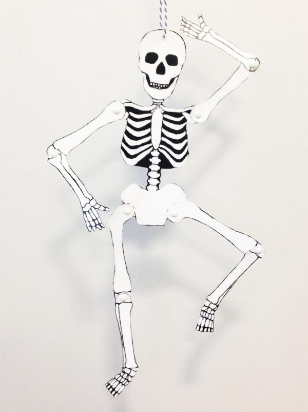 Pantin squelette