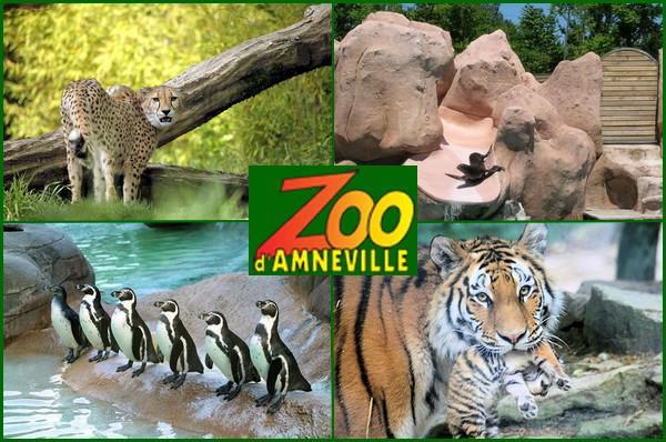 Parcs zoologique : Amemneville
