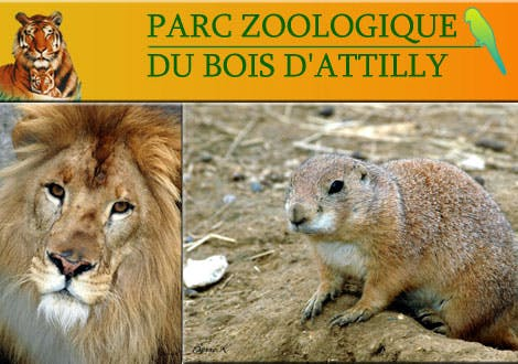 Photo Parcs zoologique Bois d'Attilly