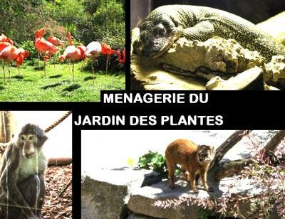 Photo  Ménagerie du Jardin des Plantes
