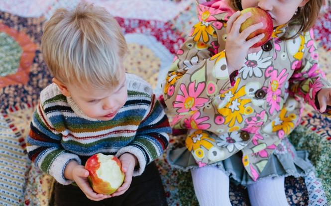 picnic automne