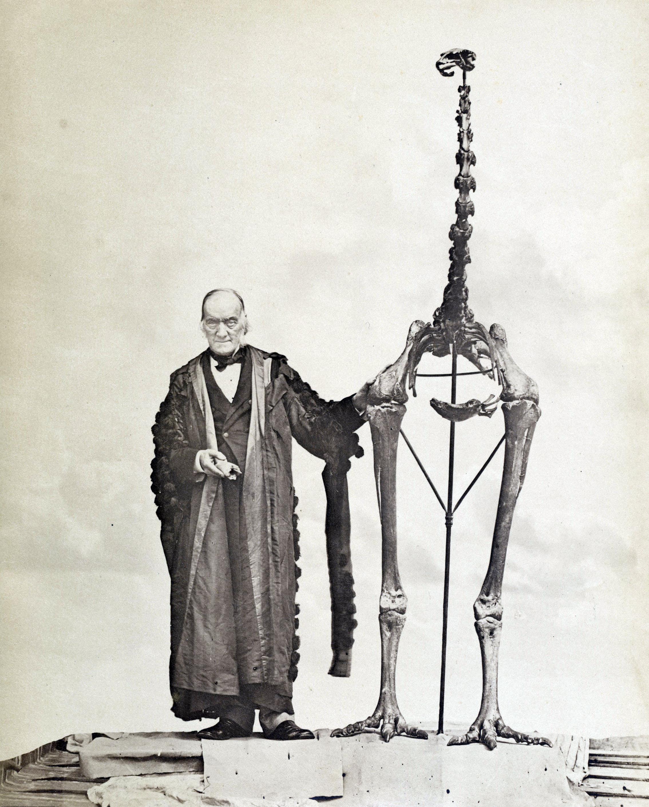 Portrait du paléontologue Richard Owen, en 1879