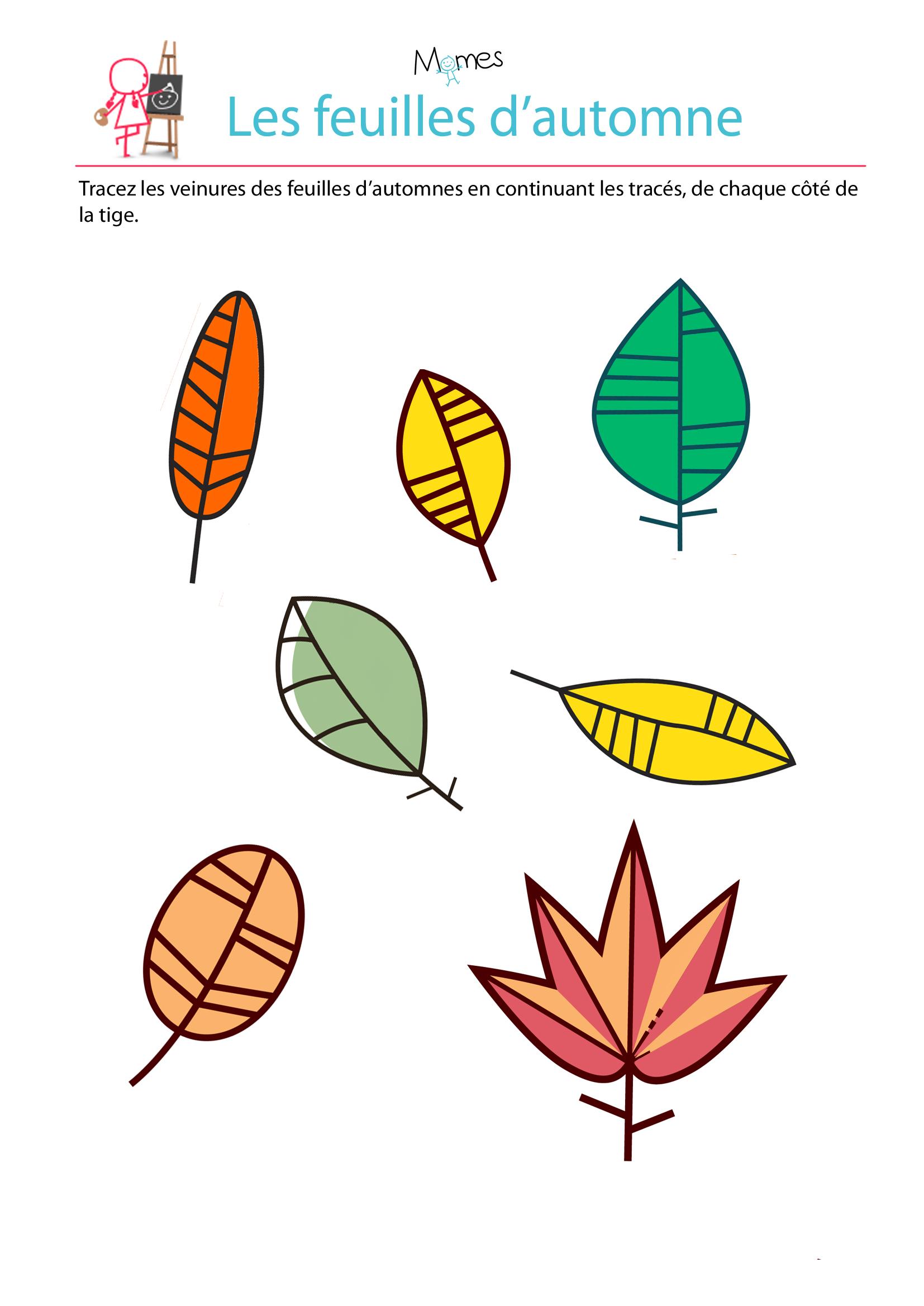 Reproduction symétrique: les feuilles d'automne