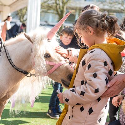 Les Dimanches au Galop courses hippiques sortie famille chevaux