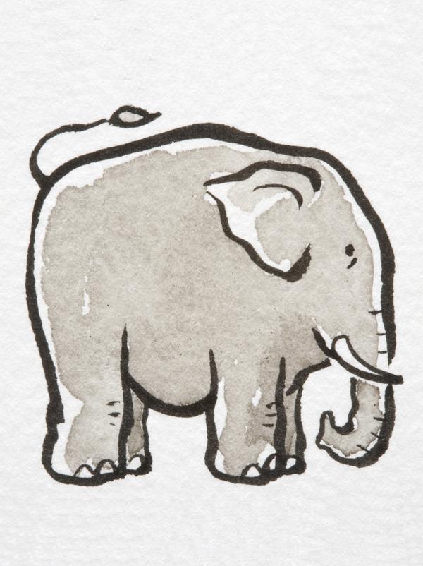 Comptine Un éléphant blanc