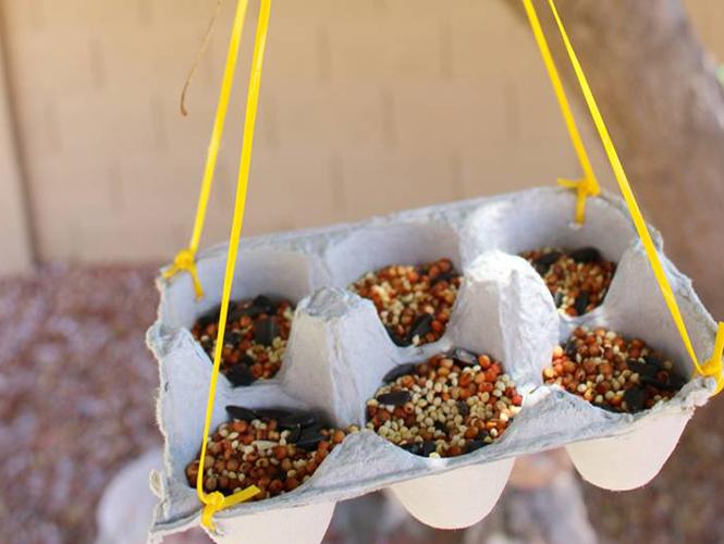 Une mangeoire à oiseaux avec une boite à oeufs