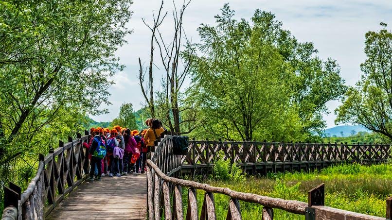 Covid-19 : les sorties scolaires suspendues dans certaines villes