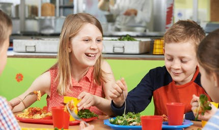 Cantine : 74 % des écoliers du primaire bénéficient de menus végétariens