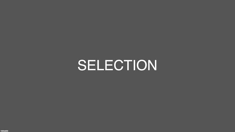 Z - demo sélection PAR Ligula Bibendum Consectetur Tellus Ullamcorper