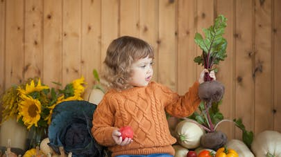 La betterave, une mine de bienfaits nutritionnels