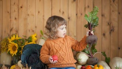 Betterave : tous les bienfaits nutritionnels