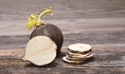 Le radis noir : tous ses bienfaits nutritionnels