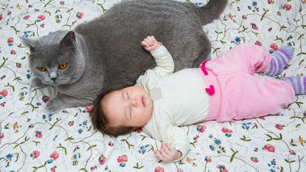 Prénom : une future maman veut appeler son bébé comme le chat de sa sœur !