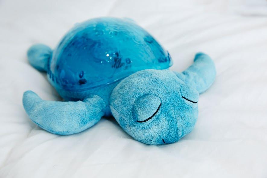 Tranquil Turtle coloris aqua