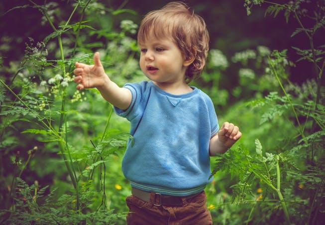 Garçon dans la forêt