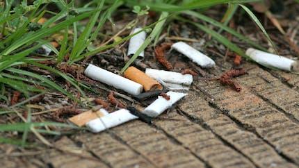 Une petite fille de 13 mois intoxiquée par un mégot de cigarette